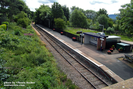 Great-Ayton-Station-SAM_2197