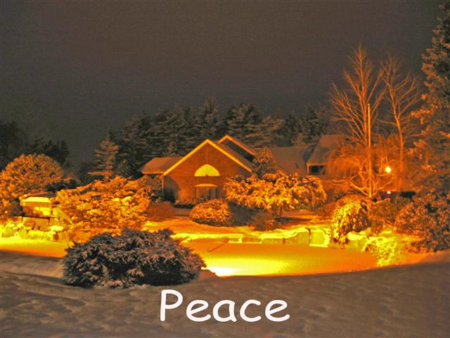 Cultivating Inner Peace and Balance in the New Year