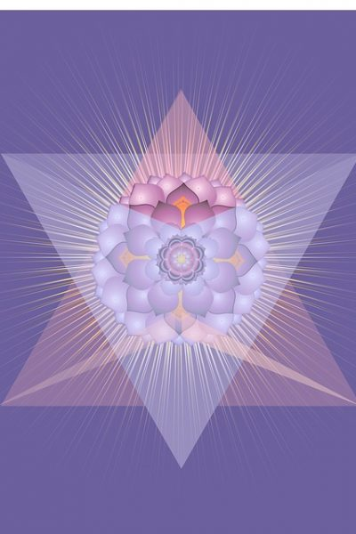 Shift Into the Flow of Grace, Love and Life